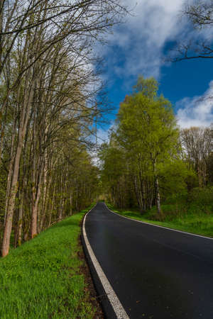 Color morning on wet black road after rain near Nejdek town in north Bohemia