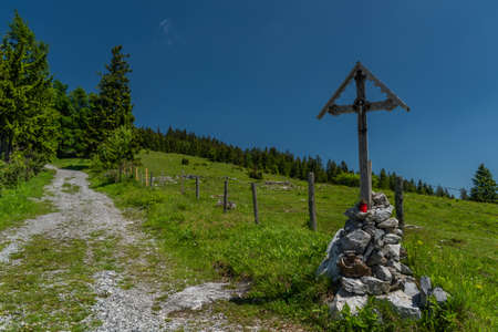 Pass near Niederer Schockl hill with green meadows and fences for cows in south Austria 写真素材