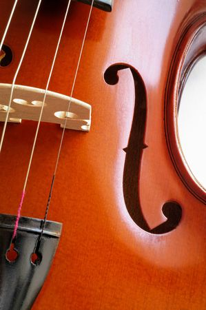Musical instruments: violin closeup showing the bridge