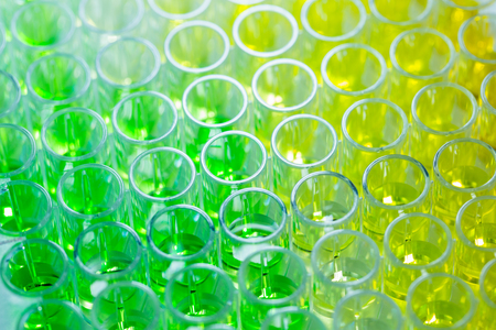sample tray: Close - up 96 well plates on lab table with Green and yellow liquid samples Stock Photo