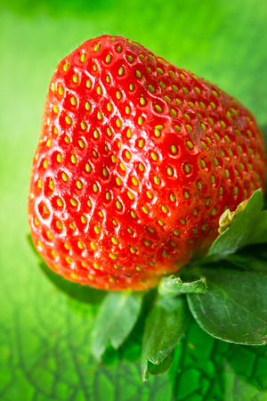 Fresh strawberry on green background