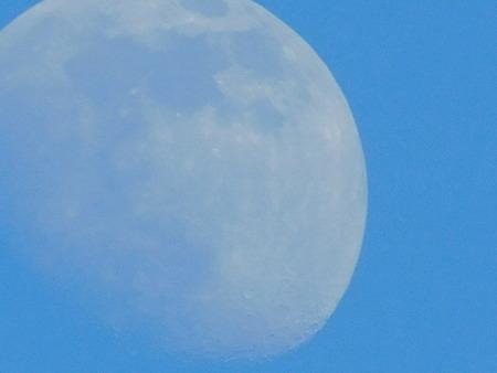 summer moon Banco de Imagens