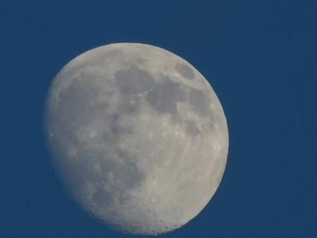 summer moon Stock fotó
