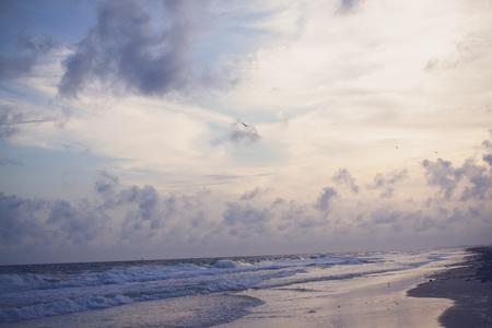 storm tide: stormy beach
