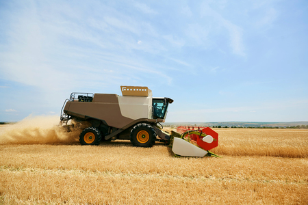 Agricultural harvester working in a wheat field.