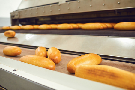 Automatic bakery production line with bread on conveyor belt equipment machinery in bakery factory 免版税图像