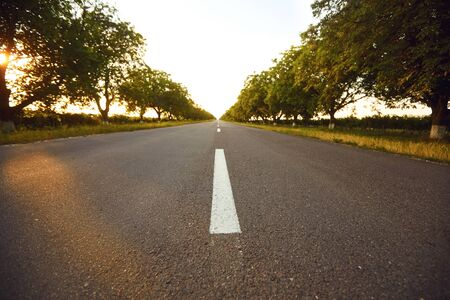 Empty asphalt road with trees on the side of the road at sunrise. Stockfoto