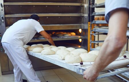 Two Bakers are pushing a tray of bread into the oven at the bakery manufactory.