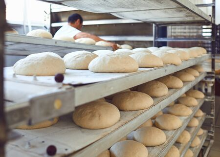 Fresh bread on trays before baking in the oven at the bakery.