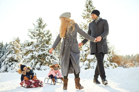 Happy family sledding in the park in winter. Mother and father and children play sledding in the snow in nature. Stock Photo