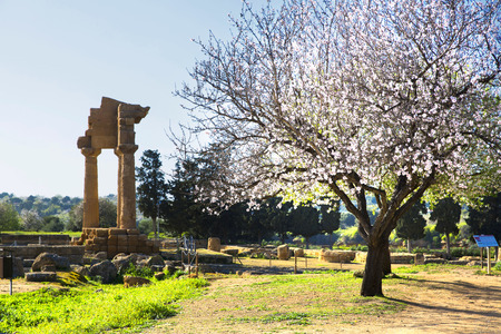 agrigento: Ancient Greek Temple of the Dioscuri (V-VI century BC), Valley of the Temples, Agrigento, Sicily.