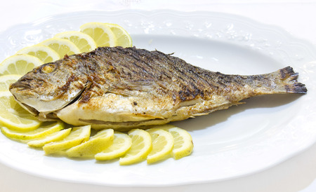 Grilled sea bream with lemon slices on white plat photo