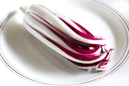 treviso: The Radicchio Rosso di Treviso isolated on white plat