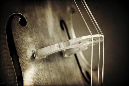 bass clef: Primer plano de contrabajo, instrumento musical de madera que se toca con un arco