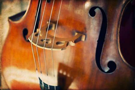 clave de fa: Primer plano de contrabajo, instrumento musical de madera que se toca con un arco