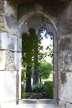 botanical gardens: Botanical Gardens of Palermo, Sicily