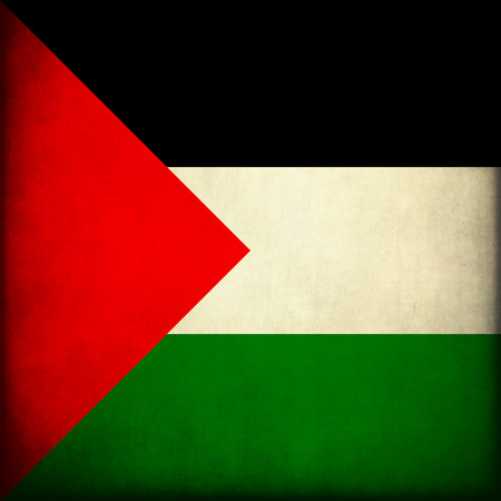 palestinian: Vintage style. Grungy Palestinian Flag