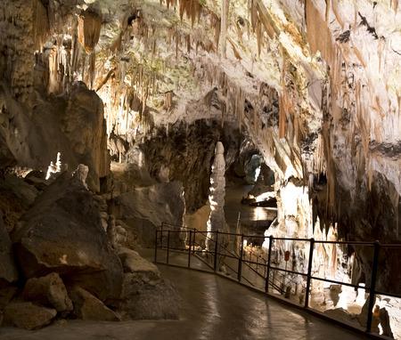 jaskinia: Jaskinia Postojna w Słowenii Zdjęcie Seryjne