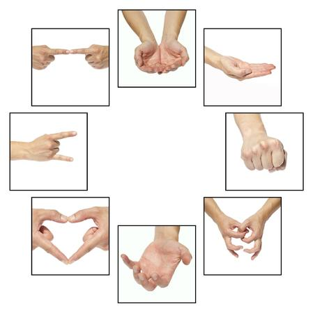 Collage - hands that indicate something on a white background photo