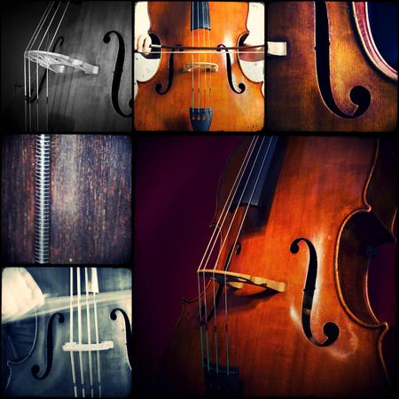 bassist: Close-up of double bass, wooden musical instrument that is played with a bow