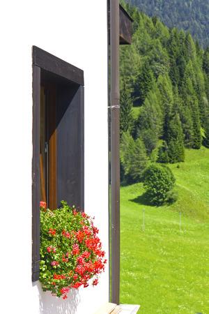 dolomite: Flowery windows in Sauris above, Carnic Alps, Friuli Venezia Giulia, Italy