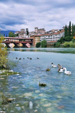 grappa: Ducks in the river of Brenta in Bassano del Grappa, Veneto, Italy. Romantic style