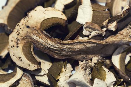 porcini: A close up of dried porcini mushroom