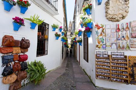 Bloemen in bloempot op de witte muren op de beroemde Bloemstraat Calleja de las Flores in het oude Joodse kwartier van Cordoba, Andalusië, Spanje