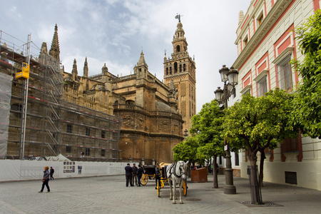 The Cathedral of Seville with the Giralda views from Piazza Virgen de los Reyes, Andalusia, Spain
