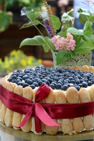 20 24 years old: Homemade cake - birthday cake on a table in the garden