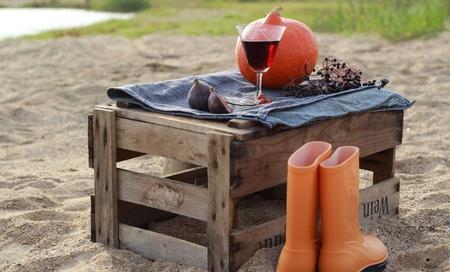 botas de lluvia: Paisaje del oto�o con la calabaza y las botas de lluvia en la caja despu�s de que el vino en la playa Foto de archivo