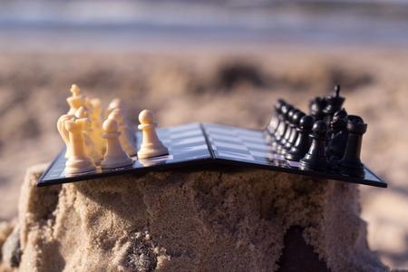 3d dove: chess on the beach