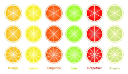 Colorful set of cut slices of citrus fruits.