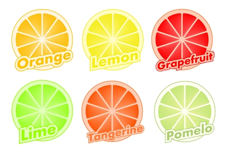 Colorful set of cut slices of citrus fruits of orange, lime, grapefruit, tangerine, lemon and pomelo. Mixed fresh health fruit. Stock Vector - 91320460