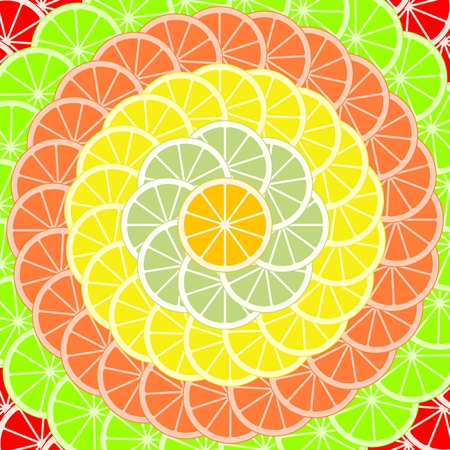 Colorful background of slices and slices of citrus fruits of orange, lime, grapefruit, tangerine, lemon and pomelo stored in a circle. Backdrop from mixed fresh fruit.