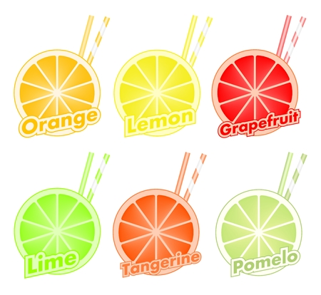 Colorful set of cut slices of citrus fruits with colorful straws of orange, lime, grapefruit, tangerine, lemon and pomelo. Mixed fresh health fruit. Stock Vector - 93820154