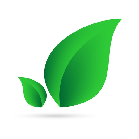 Eco icon from green leaves side by side on a white background with gray shadow on the bottom. Abstract design natural