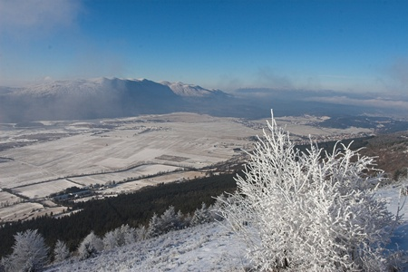 idyll: winter idyll Stock Photo