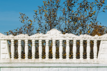 Cement fence against blue sky in sunny day  Garden tree background