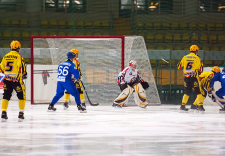 dynamo: MOSCOW - DECEMBER 12, 2014: Joel Oten (1) goaltender of SKA team in action during the Russian  bandy league game Dynamo Moscow vs SKA Neftyanik in sport palace Krilatskoe, Moscow, Russia. Dynamo won 9:1