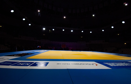 third world: RUSSIA, MOSCOW - APRIL 18 2015: Tatami ring just before the Third World Hand to hand combat Championship in Moscow, Russia, 2015 Editorial