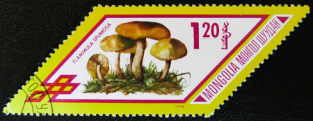 MOSCOW, RUSSIA - JANUARY 7, 2017: A stamp printed in Mongolia shows Flammula Spumosa mushrooms, series, circa 1978 Editorial
