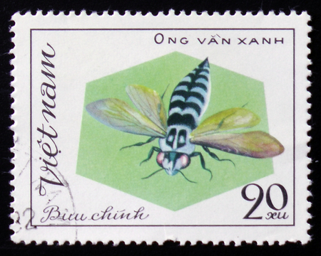 aculeata: MOSCOW, RUSSIA - FEBRUARY 12, 2017: A stamp printed in Vietnam shows Biru Chinh, circa 1982 Stock Photo