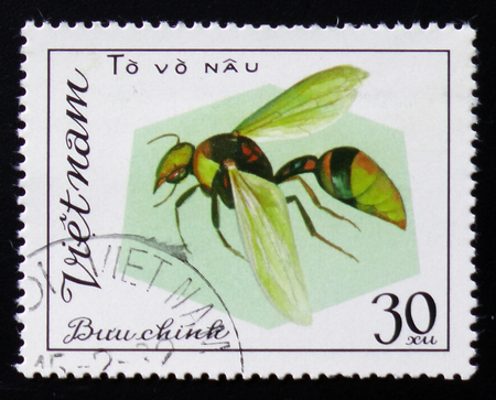aculeata: MOSCOW, RUSSIA - FEBRUARY 12, 2017: A stamp printed in Vietnam shows Aculeata, circa 1982 Stock Photo