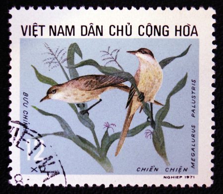 old envelope: MOSCOW, RUSSIA - JANUARY 7, 2017: A stamp printed in Vietnam shows Megalurus palustris bird, circa 1988