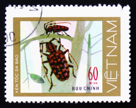 MOSCOW, RUSSIA - FEBRUARY 12, 2017: A stamp printed in Vietnam shows a pair of green spotted beetles with long antenna on leafless plants, circa 1977