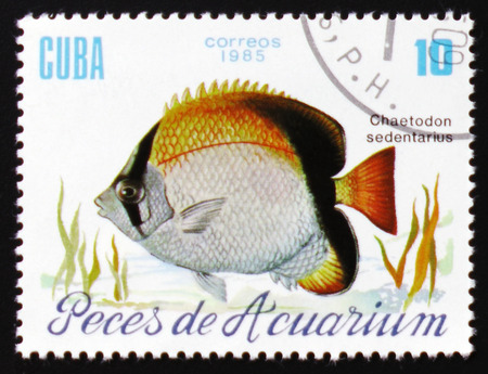 estampilla: MOSCOW, RUSSIA - FEBRUARY 12, 2017: A stamp printed in Cuba shows a fish with the inscription Editorial