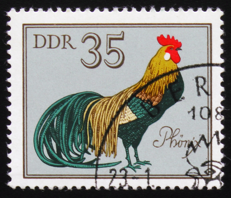 A Stamp shows Rooster Phoenix from the series Stock fotó