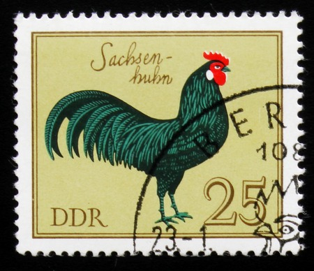 A Stamp shows image of a rooster Saxony cock from the series Reklamní fotografie