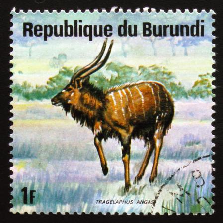 estampilla: MOSCOW, RUSSIA - FEBRUARY 19, 2017: A stamp printed by Burundi shows nyala (Tragelaphus angasii), also called the indian antelope, series Animals Burundi, circa 1975